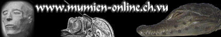 Theorie & Praxis der Mumifzierung. Experimente wie die Einbalsamierung eines Krokodils, Interessantes über den Totenkult, Mumienschändung, Mumienforschung, Riten und vieles mehr.